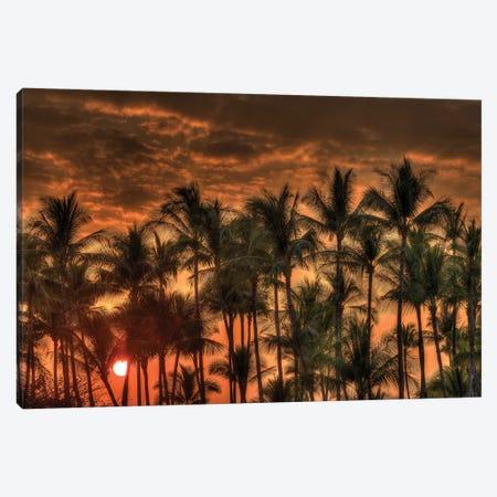 Anaeho'omalu Bay, Kohala Coast, Big Island, Hawaii, USA Canvas Print #SWE31} by Stuart Westmorland Canvas Print