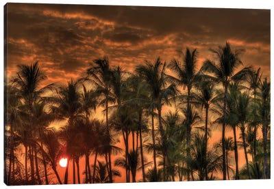 Anaeho'omalu Bay, Kohala Coast, Big Island, Hawaii, USA Canvas Art Print