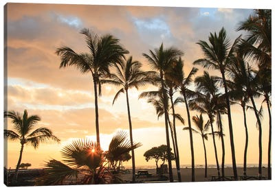 Kaloko-Honokohau Beach Park near Kona, Big Island, Hawaii, USA Canvas Art Print