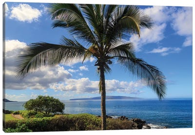 Maui, Hawaii, USA Canvas Art Print
