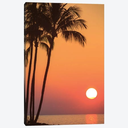 Maui, Hawaii, USA. Palm trees in the sunset. Canvas Print #SWE57} by Stuart Westmorland Canvas Artwork
