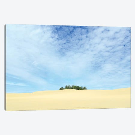 Oregon Dunes National Recreation Area, Oregon Coast near Reedsport. Canvas Print #SWE59} by Stuart Westmorland Art Print