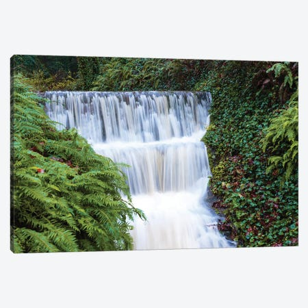 Seasonal creek on outskirts of Portland, Oregon, USA Canvas Print #SWE67} by Stuart Westmorland Art Print