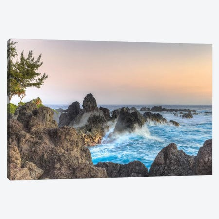 Sunrise at Laupahoehoe Beach Park, Hamakua Coast, Big Island, Hawaii Canvas Print #SWE85} by Stuart Westmorland Art Print