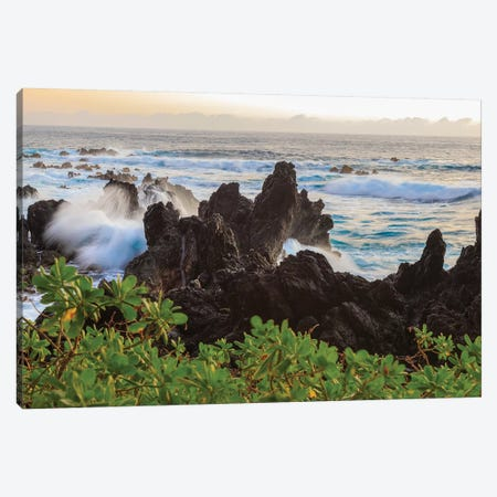 Sunrise at Laupahoehoe Beach Park, Hamakua Coast, Big Island, Hawaii Canvas Print #SWE86} by Stuart Westmorland Canvas Print