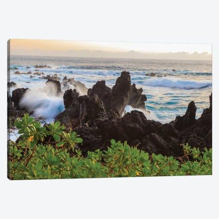 Sunrise at Laupahoehoe Beach Park, Hamakua Coast, Big Island, Hawaii Canvas Print #SWE86} by Stuart Westmorland Canvas Print