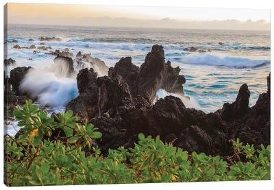 Sunrise at Laupahoehoe Beach Park, Hamakua Coast, Big Island, Hawaii Canvas Art Print