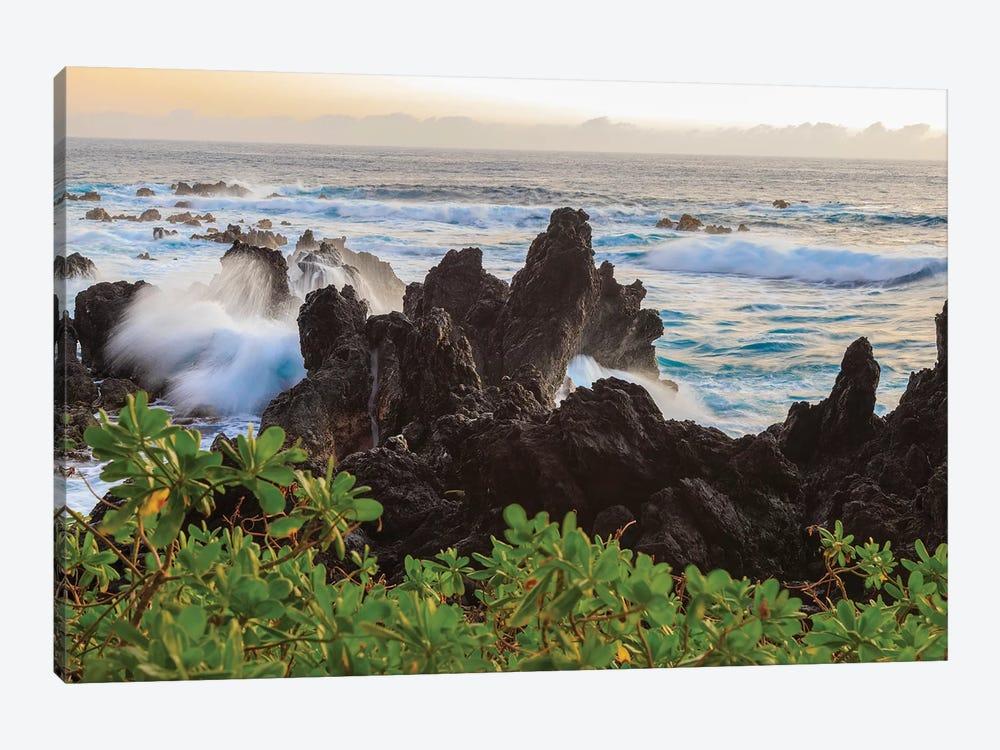 Sunrise at Laupahoehoe Beach Park, Hamakua Coast, Big Island, Hawaii by Stuart Westmorland 1-piece Canvas Art