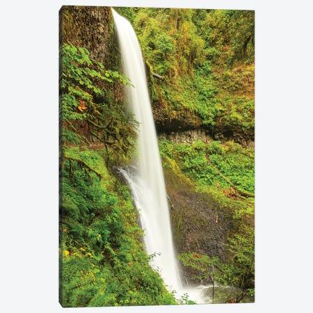 Trail of Ten Falls, Silver Falls State Park, near Silverton, Oregon Canvas Print #SWE98} by Stuart Westmorland Canvas Art Print