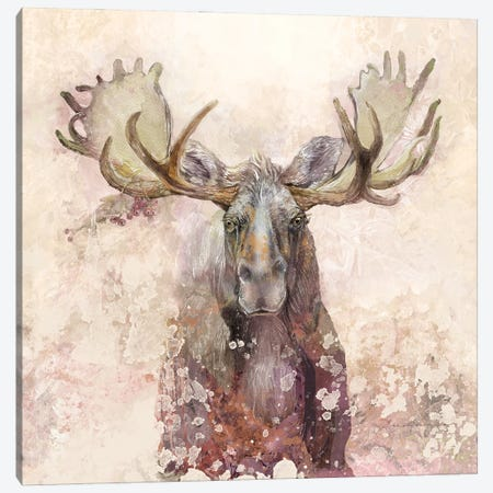 Moose Canvas Print #SWH9} by Evelia Sowash Canvas Print