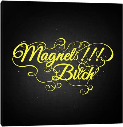 Magnets Bitch II Canvas Art Print