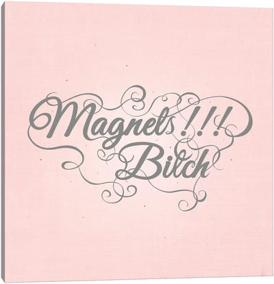 Magnets!!! Bitch Canvas Art Print