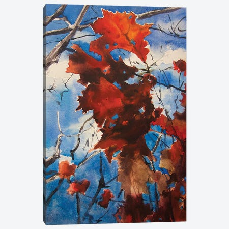 Flame Tree Canvas Print #SYE10} by Sarah Yeoman Canvas Artwork