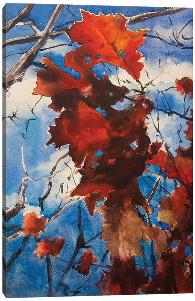 Flame Tree Canvas Art Print
