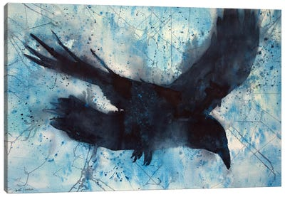 Flight Canvas Art Print