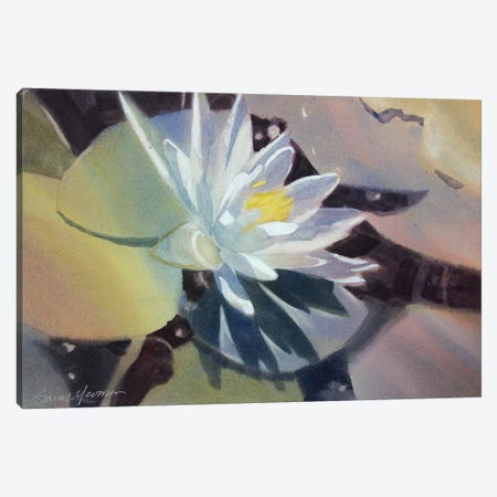 Light Lily Canvas Print #SYE21} by Sarah Yeoman Canvas Art Print