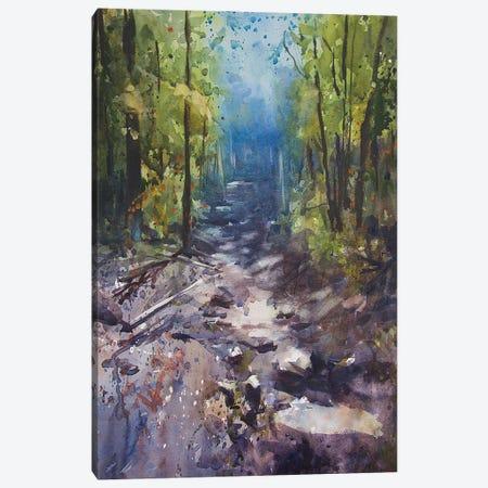 Path III Canvas Print #SYE28} by Sarah Yeoman Art Print