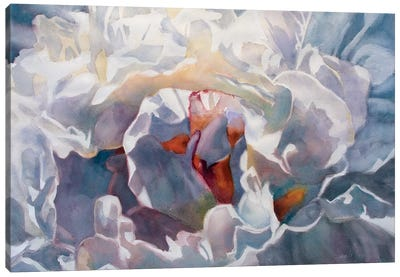 Poem Peony Canvas Art Print