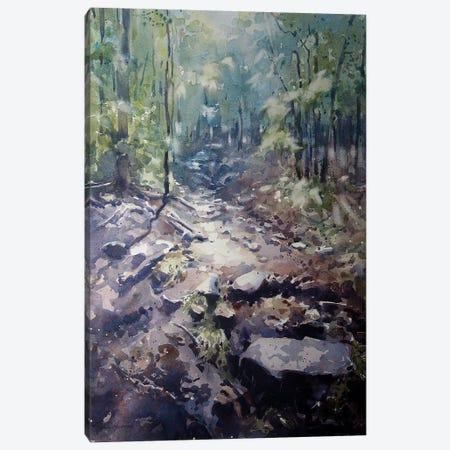 The Path Canvas Print #SYE37} by Sarah Yeoman Art Print