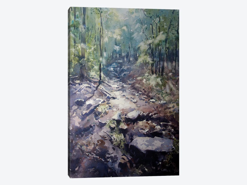 The Path by Sarah Yeoman 1-piece Canvas Print