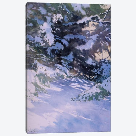 Winter Of The White Pines Canvas Print #SYE51} by Sarah Yeoman Canvas Artwork