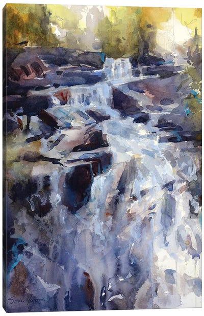 Falls Canvas Art Print