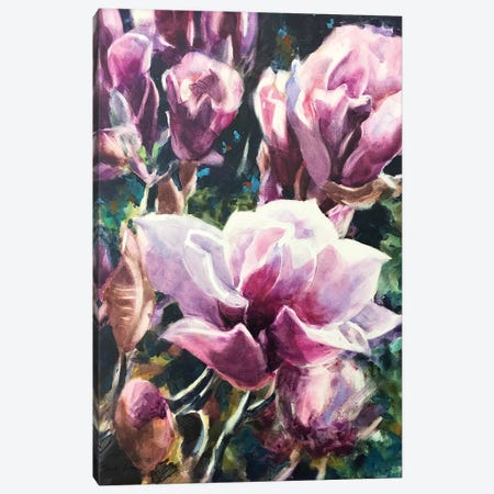 Magnolias Canvas Print #SYE58} by Sarah Yeoman Canvas Artwork