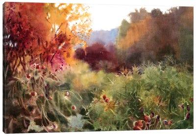 Ashland Hollow Canvas Art Print