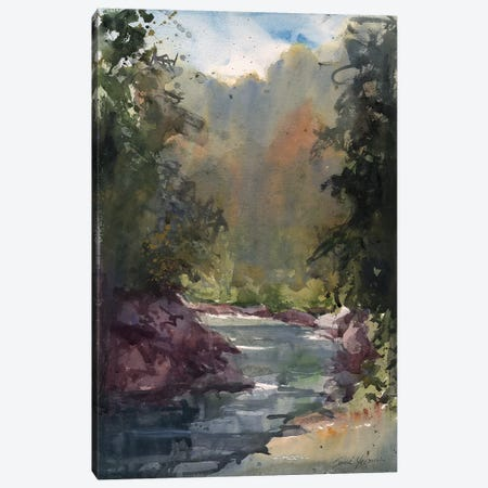 River In Tuscany Canvas Print #SYE68} by Sarah Yeoman Canvas Art Print