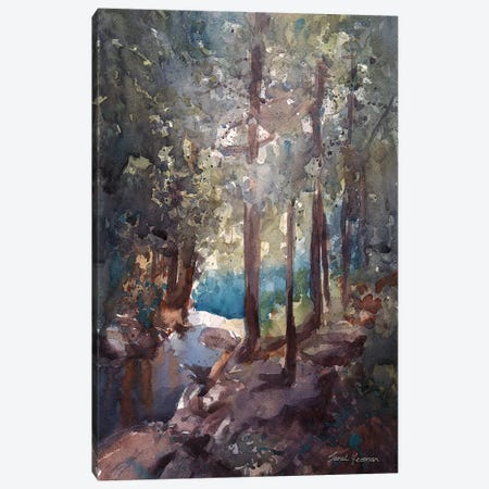 Top Of The Falls Adirondacks Canvas Print #SYE69} by Sarah Yeoman Canvas Art Print