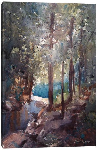 Top Of The Falls Adirondacks Canvas Art Print