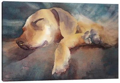 Colin Canvas Art Print
