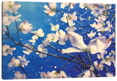 Dogwood And Wind Canvas Art Print