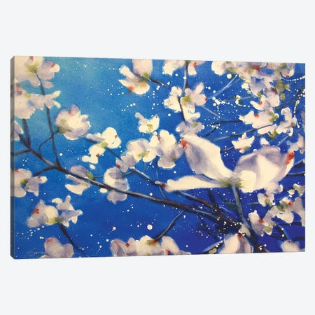 Dogwood And Wind Canvas Print #SYE8} by Sarah Yeoman Canvas Wall Art