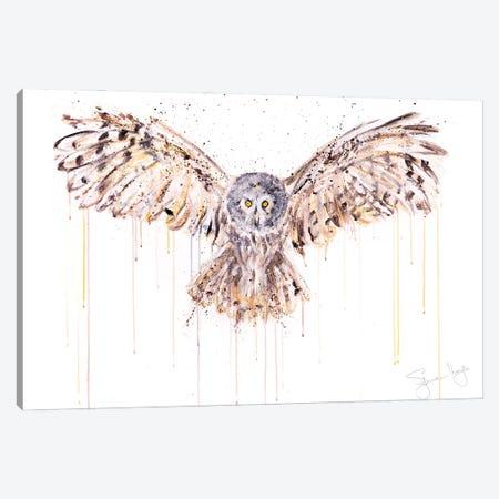 Owl IV Canvas Print #SYK103} by Syman Kaye Canvas Print