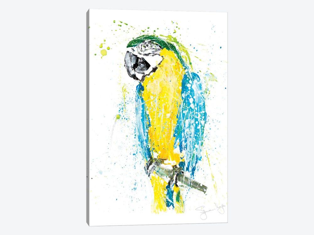 Parrot I by Syman Kaye 1-piece Art Print
