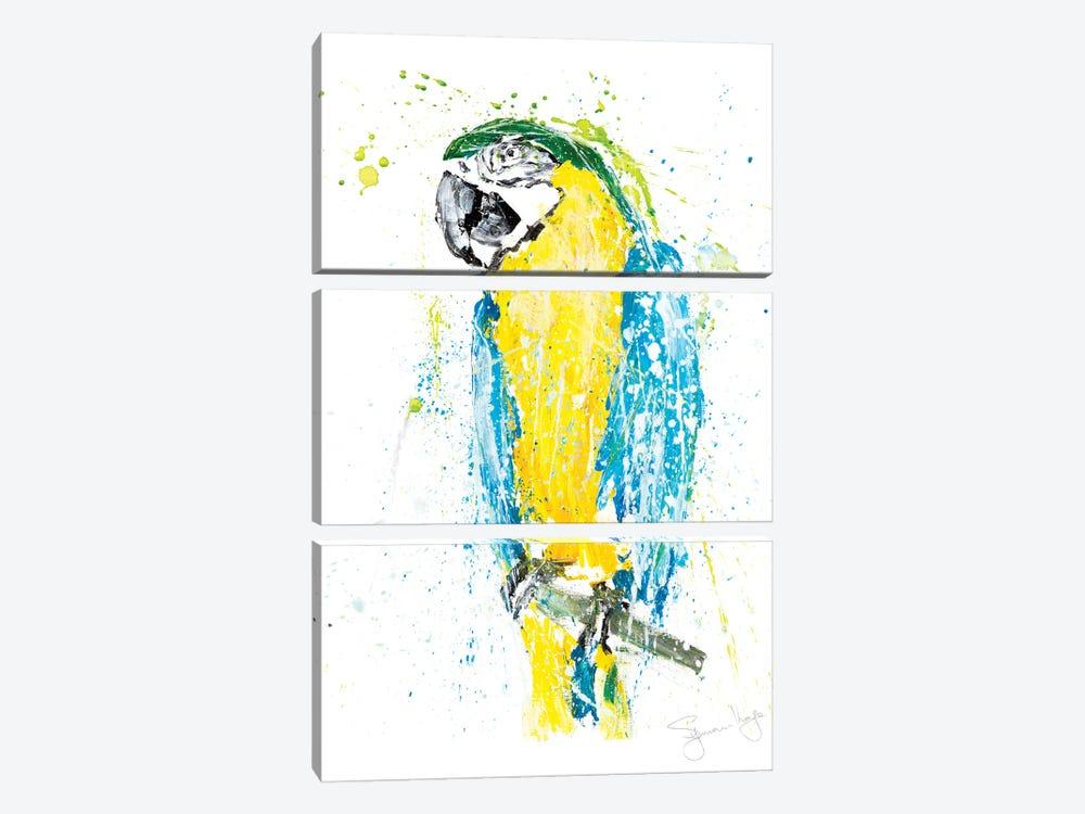 Parrot I by Syman Kaye 3-piece Art Print
