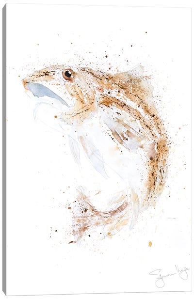 Atlantic Cod II Canvas Art Print