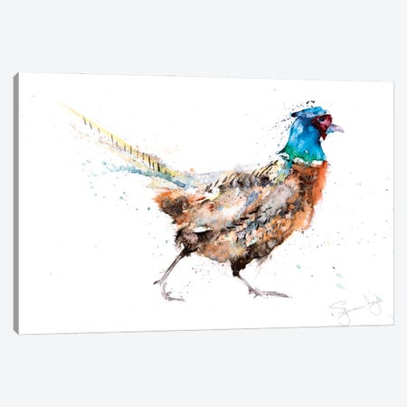 Pheasant I Canvas Print #SYK110} by Syman Kaye Canvas Wall Art