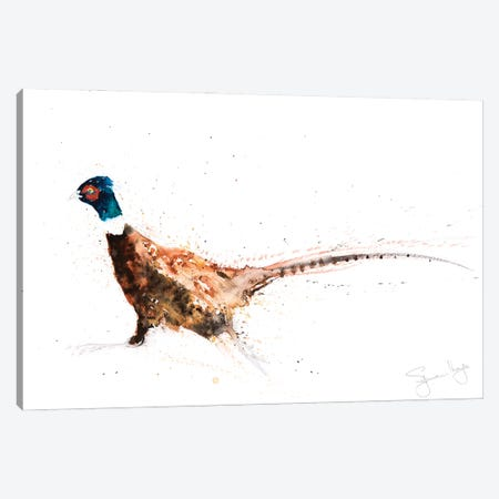Pheasant IX Pheasant Canvas Print #SYK113} by Syman Kaye Canvas Art