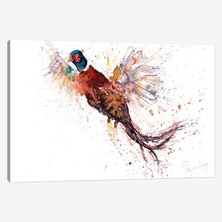 Pheasant V Pheasant Canvas Print #SYK116} by Syman Kaye Art Print