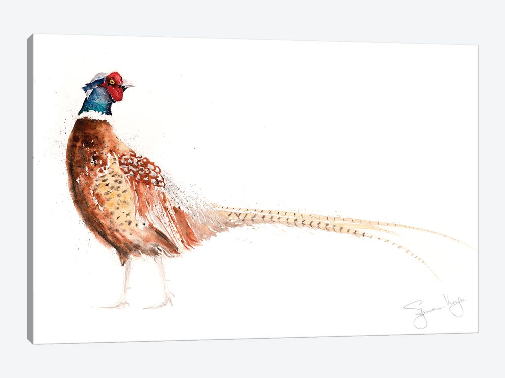 Pheasant X by Syman Kaye 1-piece Canvas Wall Art