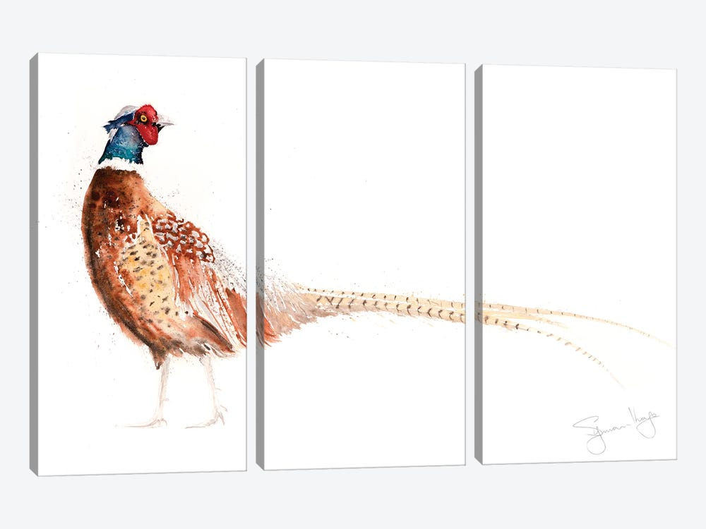Pheasant X by Syman Kaye 3-piece Canvas Wall Art