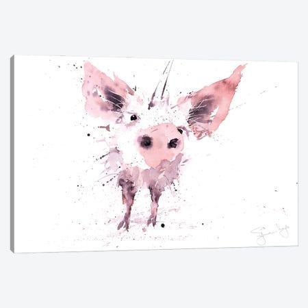 Pig Canvas Print #SYK119} by Syman Kaye Canvas Artwork