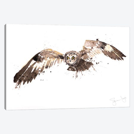 Barn Owl Canvas Print #SYK11} by Syman Kaye Canvas Artwork