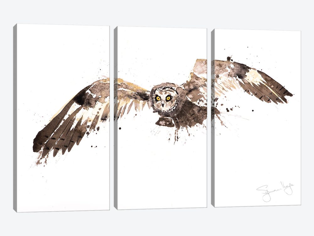 Barn Owl by Syman Kaye 3-piece Canvas Art