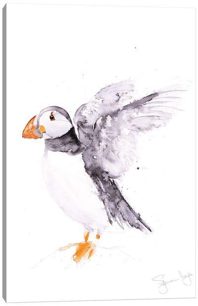 Puffin Pecy Canvas Art Print