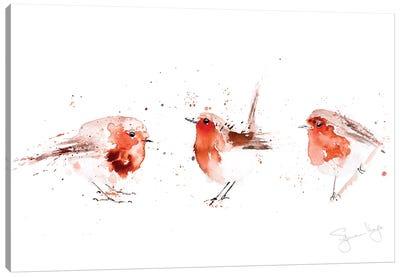 Robin III Fat Robins Canvas Art Print