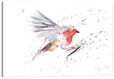 Robin In Flight Robin Canvas Art Print