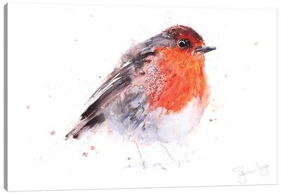 Robin Round Robin Canvas Art Print